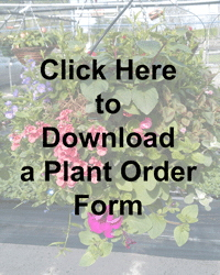 Click to Download a Plant Order Form